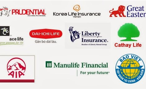 Vietnam's insurance industry set for further expansion