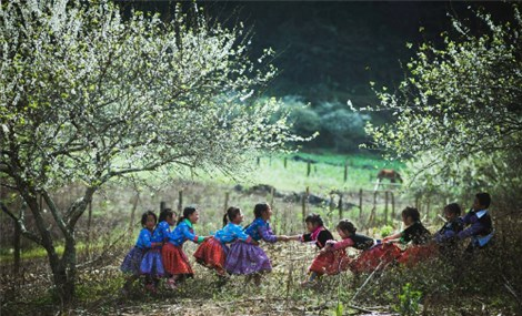 Vietnam's beauty through lens of four photographers