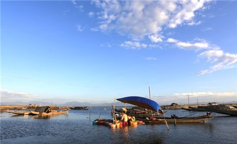 Tam Giang Lagoon full of all kinds of life