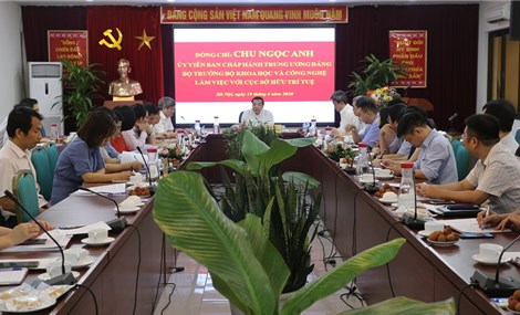 Number of patents in Vietnam increases by 56 per cent