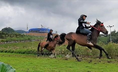 Horse race highlights Northwest region's beauty