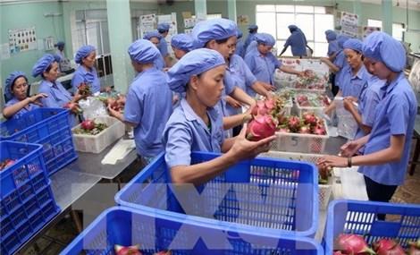 越南农业力争2018年出口额达400亿美元