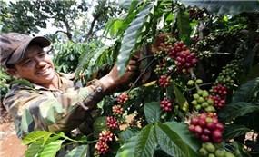 Tận dụng tối đa các lợi thế để giữ đà tăng trưởng xuất khẩu
