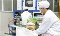 Giá trị cao, gạo Việt tự tin chinh phục thị trường