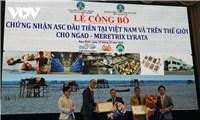 Lần đầu tiên tại Việt Nam, ngao Nam Định được chứng nhận ASC