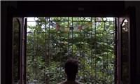 Âm nhạc của Beethoven truyền cảm hứng cho sắp đặt video về Hà Nội
