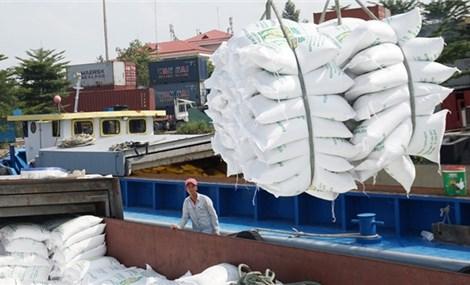 2021年1月坚江省出口额猛增