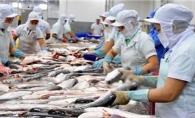 越南努力促进世贸组织关于渔业补贴的谈判