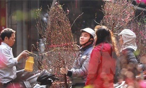 Secretariat's Permanent member calls for better preparation for Lunar New Year