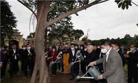 Tết trồng cây Xuân Tân Sửu: Việc làm nhỏ nhân lên nhiều cánh rừng lớn