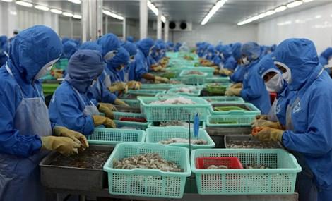 Mỹ hiện là khách hàng lớn nhất của nông sản Việt
