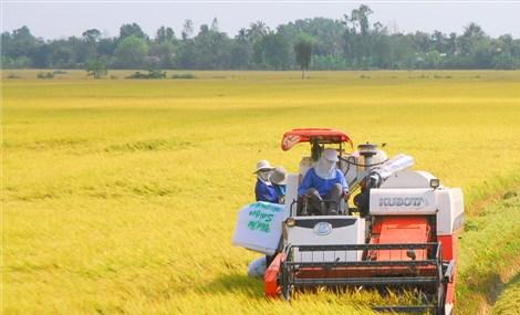 XUẤT KHẨU NĂM 2021: Việt Nam đặt mục tiêu cung cấp nông sản cho thế giới