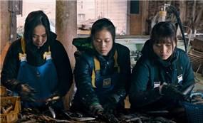 Phim về người lao động Việt Nam tại Nhật Bản
