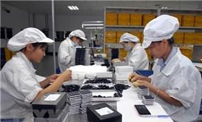 UEA là thị trường tiềm năng với doanh nghiệp Việt