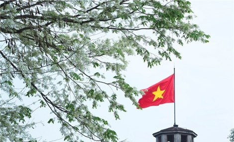 Hanoi is the capital of Vietnam, and has been a place to keep and witness more than 1000 years of a long history