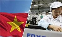 Foxconn'đặt cược' vào Việt Nam