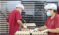 Khánh thành nhà máy ấp trứng gia cầm công nghệ cao tại Tây Ninh