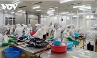 Việt Nam đã khai thác tốt nhiều thị trường trong CPTPP