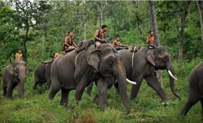 Lễ hội đua voi và thuyên độc mộc Đắk Lắk