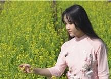Mùa xuân làng lúa làng hoa