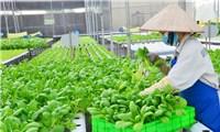 Trồng trọt sẽ là ngành sản xuất chủ lực của nông nghiệp