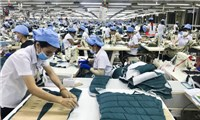 Singapore is the largest contributor to Vietnam's FDI inflow in five months