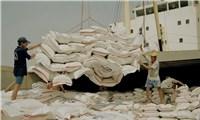 Làm rõ dấu hiệu gian lận xuất xứ gạo Việt Nam