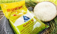 """Bộ Nông nghiệp nói gì về cảnh báo mất quyền thi""""Gạo ngon nhất thế giới""""?"""