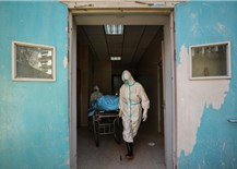 Experts warn of the next pandemic if the origin of Covid-19 is not found