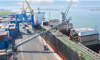 Cảng Chu Lai: Phấn đấu trở thành Trung tâm giao nhận-vận chuyển hàng hóa xuất nhập khẩu quốc tế