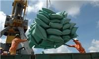 Xuất khẩu gạo vượt bão Covid-19