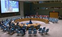 Việt Nam đề cao đối thoại, giải quyết thách thức khủng bố ở Trung Phi