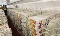 Bưu điện dành nguyên chuyến bay chuyển vải thiều xuất khẩu đến Nhật Bản
