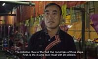 Di sản văn hóa phi vật thể Việt'hòa mạng'