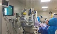 Nữ bệnh nhân nguy kịch vì mắc Covid-19 đang hồi phục kỳ diệu