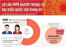 Cơ cấu 499 người trúng cử đại biểu Quốc hội khóa XV
