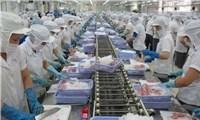 Xuất khẩu thủy sản của Việt Nam sang châuÂu tăng