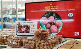 Vải thiều Việt Nam được ưa chuộng, doanh nghiệp Pháp đẩy nhanh nhập khẩu lô thứ 2