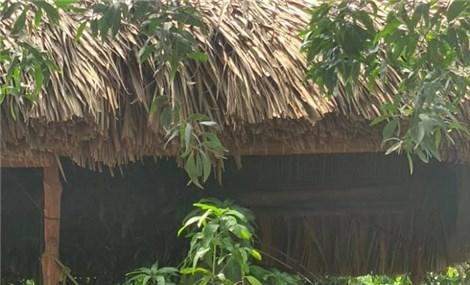 Khu sinh thái Lành Farm ở Đồng Nai  trẻ lý tưởng với trẻ nghỉ hè