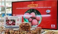 Vải thiều Việt bán tại Pháp giá hơn 500.000 đồng một kg
