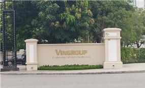 Vốn đầu tư ra quốc tế của Việt Nam bị tác động mạnh chủ yếu do các điểu chỉnh của Vingroup