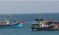 Bạc Liêu phát triển đội tàu đánh bắt xa bờ, khai thác kinh tế biển