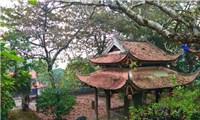 Bảo vật Kim Cương tượng thời Lý trong chùa Đọi Sơn