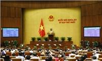 Kỳ họp thứ nhất, Quốc hội khóa XV: Xem xét nhiều báo cáo quan trọng