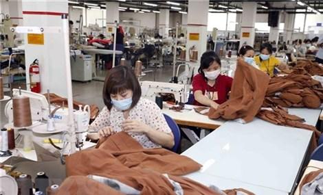 Kim ngạch thương mại Việt Nam-Lào tiếp tục tăng trong nửa đầu năm 2021