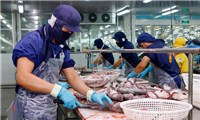 Xuất khẩu phục hồi giúp nhiều doanh nghiệp lãi lớn