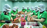 Hoa Kỳ sẽ không hạn chế thương mại đối với hàng hóa xuất khẩu của Việt Nam