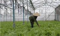 Dự thảo Nghị định ưu đãi đầu tư vào nông nghiệp