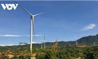 Quảng Trị dừng cấp chủ trương đầu tư dựán điện gió mới
