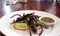 Lạ lùng món nhện độc Campuchia
